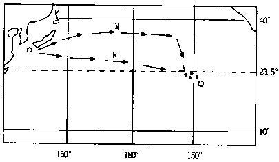 同相比例运算电路课本图